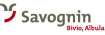 Experience the holiday region Savognin Bivio Albula