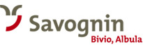 Experience the holiday region Savognin Bivio Albula
